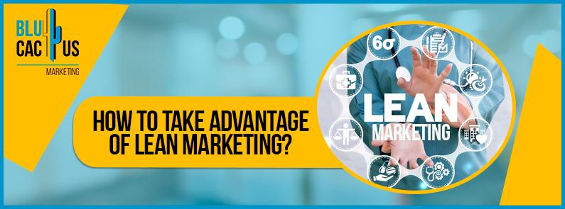 BluCactus - Lean Marketing - banner