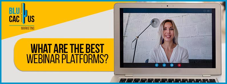 BluCactus - webinar platforms