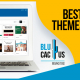 Blucactus-Best-WordPress-Themes-For-Bloggers-In-2021-cover-page