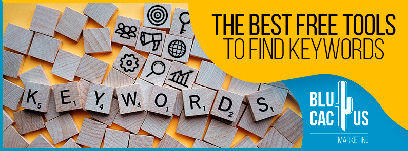 BluCactus - The best free tools to search for keywords