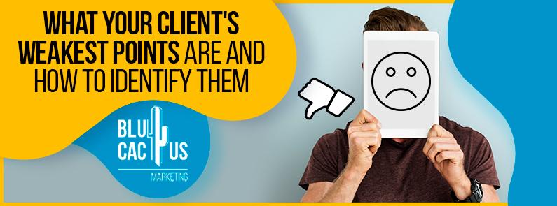 BluCactus - client's weakest points