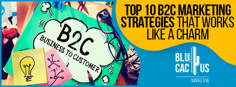 Blucactus-Top-10-B2C-Marketing-Strategies-That-Works-Like-A-Charm-cover-page